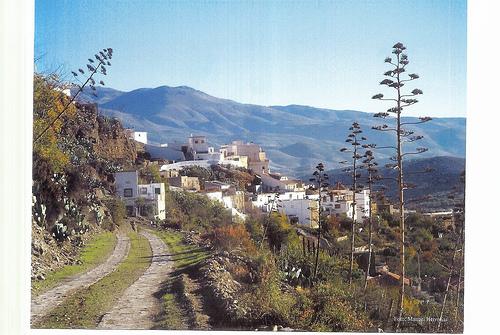 Abla Huertas